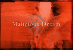 Malicious Dream in 2012